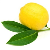 Citron - Lemon BIO*